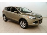 2013 Ginger Ale Metallic Ford Escape SEL 1.6L EcoBoost #126370903