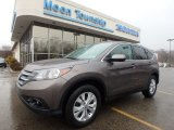 2014 Urban Titanium Metallic Honda CR-V EX AWD #126382226