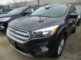 2018 Magnetic Ford Escape SE #126407623
