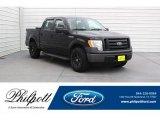 2010 Tuxedo Black Ford F150 XL SuperCrew #126530745