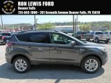 2018 Magnetic Ford Escape SEL 4WD #127083367