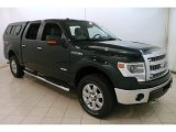2014 Green Gem Ford F150 XLT SuperCrew 4x4 #127180828