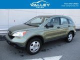 2009 Green Tea Metallic Honda CR-V LX 4WD #127359845