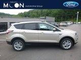 2018 White Gold Ford Escape SE 4WD #127437256