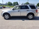 2009 Brilliant Silver Metallic Ford Escape XLT 4WD #127513481