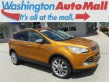2016 Electric Spice Metallic Ford Escape SE 4WD #127520881