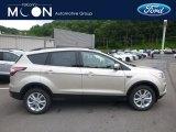 2018 White Gold Ford Escape SEL 4WD #127650163