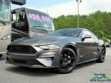 2018 Magnetic Ford Mustang EcoBoost Fastback #127667803