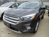 2018 Magnetic Ford Escape SEL #127906763