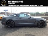 2018 Lead Foot Gray Ford Mustang Shelby GT350 #128051269