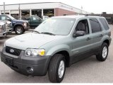 2006 Titanium Green Metallic Ford Escape Hybrid #12792174