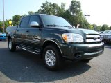 2005 Timberland Green Mica Toyota Tundra SR5 Double Cab 4x4 #12804139