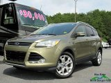 2014 Ginger Ale Ford Escape Titanium 2.0L EcoBoost #128286276
