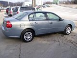 2007 Golden Pewter Metallic Chevrolet Malibu LS Sedan #12843457