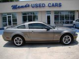 2005 Mineral Grey Metallic Ford Mustang GT Deluxe Coupe #12857685