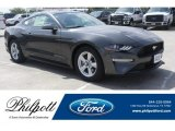 2018 Magnetic Ford Mustang EcoBoost Fastback #129144576