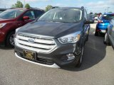 2018 Magnetic Ford Escape SE #129461903