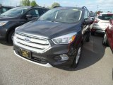 2018 Magnetic Ford Escape SE #129461900