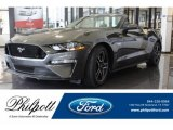 2019 Magnetic Ford Mustang GT Premium Convertible #129616357