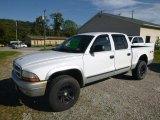 2004 Bright White Dodge Dakota SLT Quad Cab 4x4 #129818033