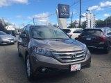 2014 Urban Titanium Metallic Honda CR-V EX-L AWD #129876643