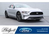 2019 Ingot Silver Ford Mustang EcoBoost Fastback #130091841