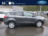 2019 Magnetic Ford Escape SE 4WD #130152564