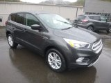 2019 Ford Escape Magnetic