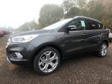 Magnetic Ford Escape in 2019