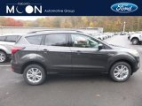 2019 Magnetic Ford Escape SEL 4WD #130281056