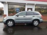 2010 Opal Sage Metallic Honda CR-V LX AWD #130447762