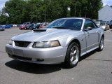 2001 Silver Metallic Ford Mustang GT Convertible #13017648