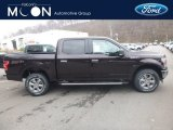 2019 Magma Red Ford F150 XLT SuperCrew 4x4 #130543879