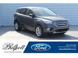 2019 Magnetic Ford Escape SE #130621033