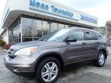 2010 Urban Titanium Metallic Honda CR-V EX AWD #130983847