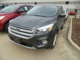 2019 Magnetic Ford Escape SE 4WD #131009782