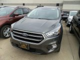 2019 Magnetic Ford Escape SE #131009813