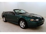2002 Tropic Green Metallic Ford Mustang V6 Convertible #131009869