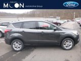 2019 Magnetic Ford Escape SE 4WD #131220675