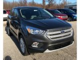 2019 Magnetic Ford Escape SE #131274834