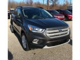 2019 Magnetic Ford Escape SEL 4WD #131274831