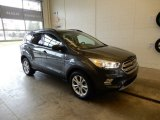2019 Magnetic Ford Escape SEL 4WD #131317161