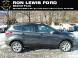 2019 Magnetic Ford Escape SEL 4WD #131338292
