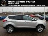 2019 Ingot Silver Ford Escape SE 4WD #131338267