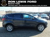 2019 Baltic Sea Green Ford Escape SE 4WD #131338261