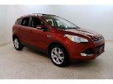 2014 Sunset Ford Escape Titanium 1.6L EcoBoost 4WD #131370778