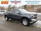 2019 Shadow Gray Metallic Chevrolet Silverado 1500 LT Double Cab 4WD #131370620