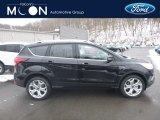 2019 Agate Black Ford Escape Titanium 4WD #131465267