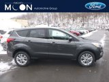 2019 Magnetic Ford Escape SE 4WD #131465264