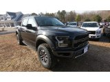 2019 Agate Black Ford F150 SVT Raptor SuperCrew 4x4 #131542442